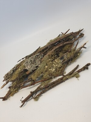 Litchen Twig Bundle
