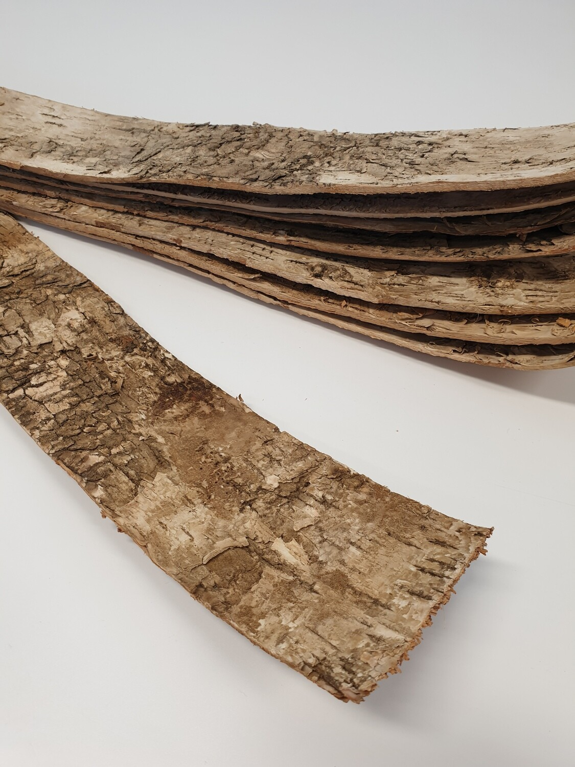 Birch Bark Strips Natural