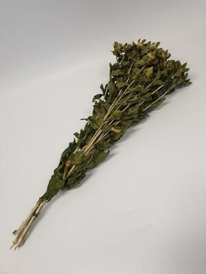 Dried Carthamus Green