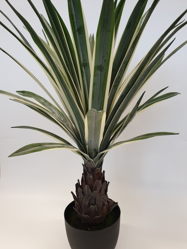 Artificial Dracena Plant with Trunk Large