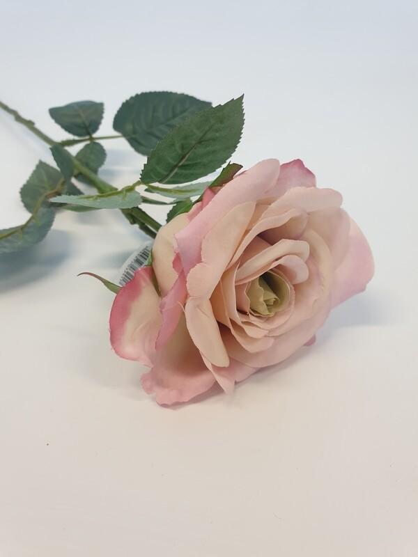 Rose Lilac Medium