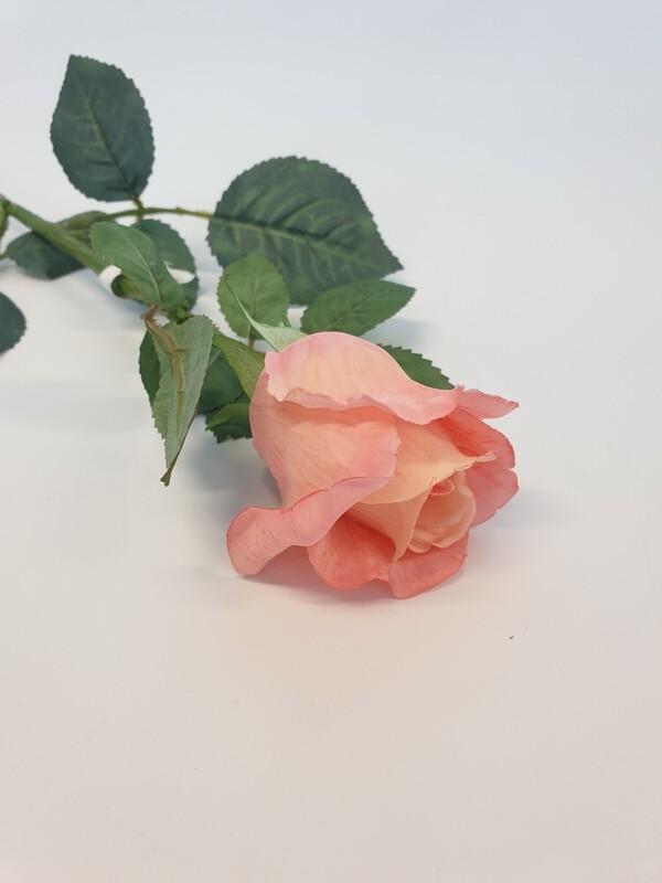 Rose Peach Small