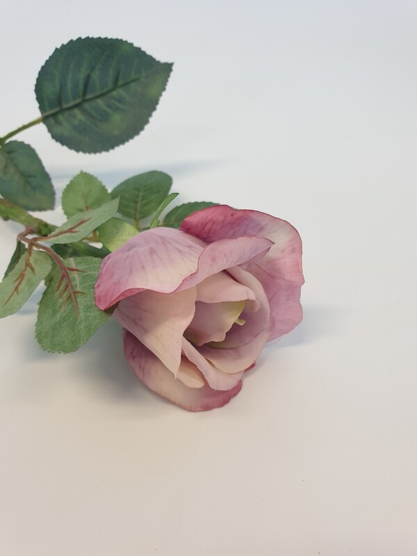 Rose Lilac Small