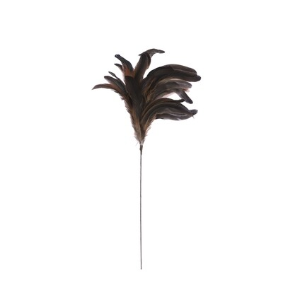 Feather Long Pick