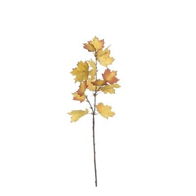 Maple Branch Short