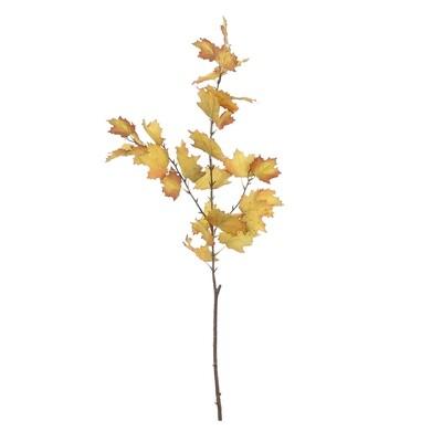 Maple Branch Long