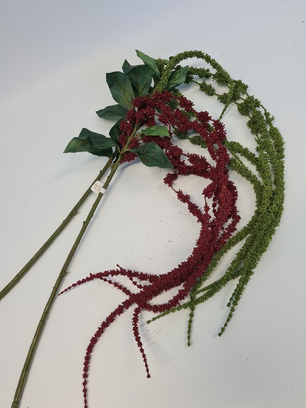Hanging Amaranthus Long Pick