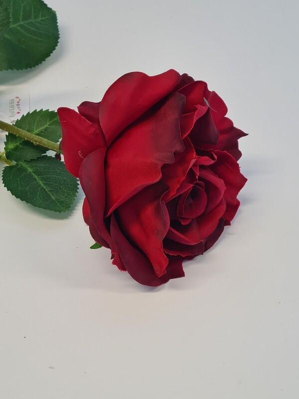 Rose Red Large