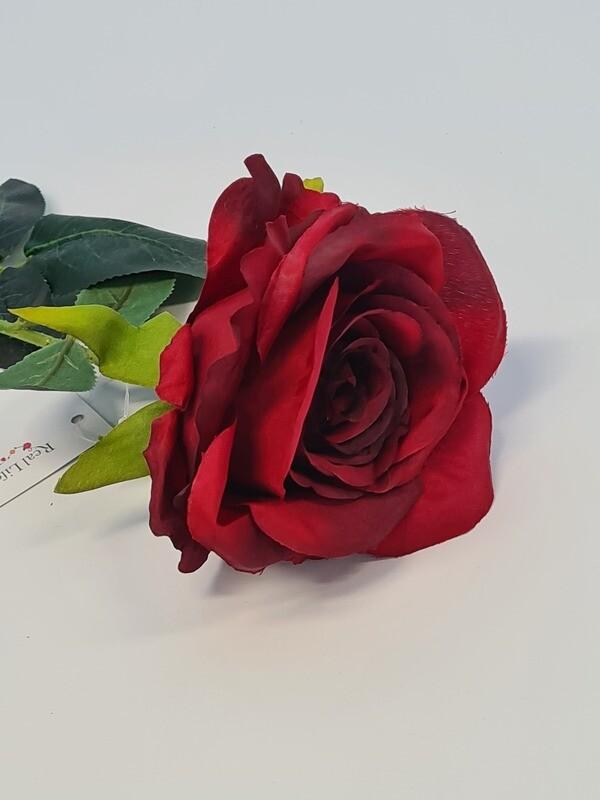Rose Red Medium