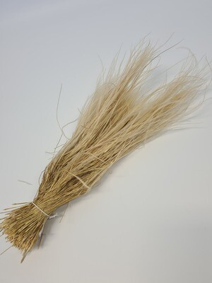 Stypa Grass Bleached