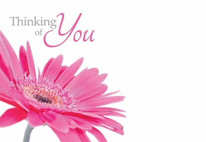Thinking Of You with Pink Gerbera
