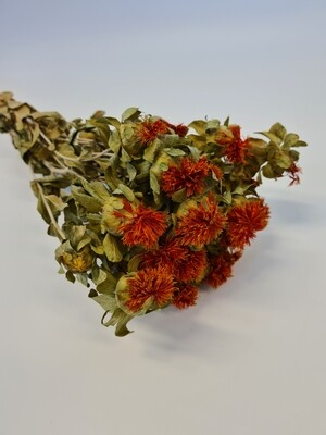 Dried Carthamus Natural