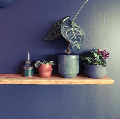 Live Edge Yew rustic solid wood Shelf floating shelf