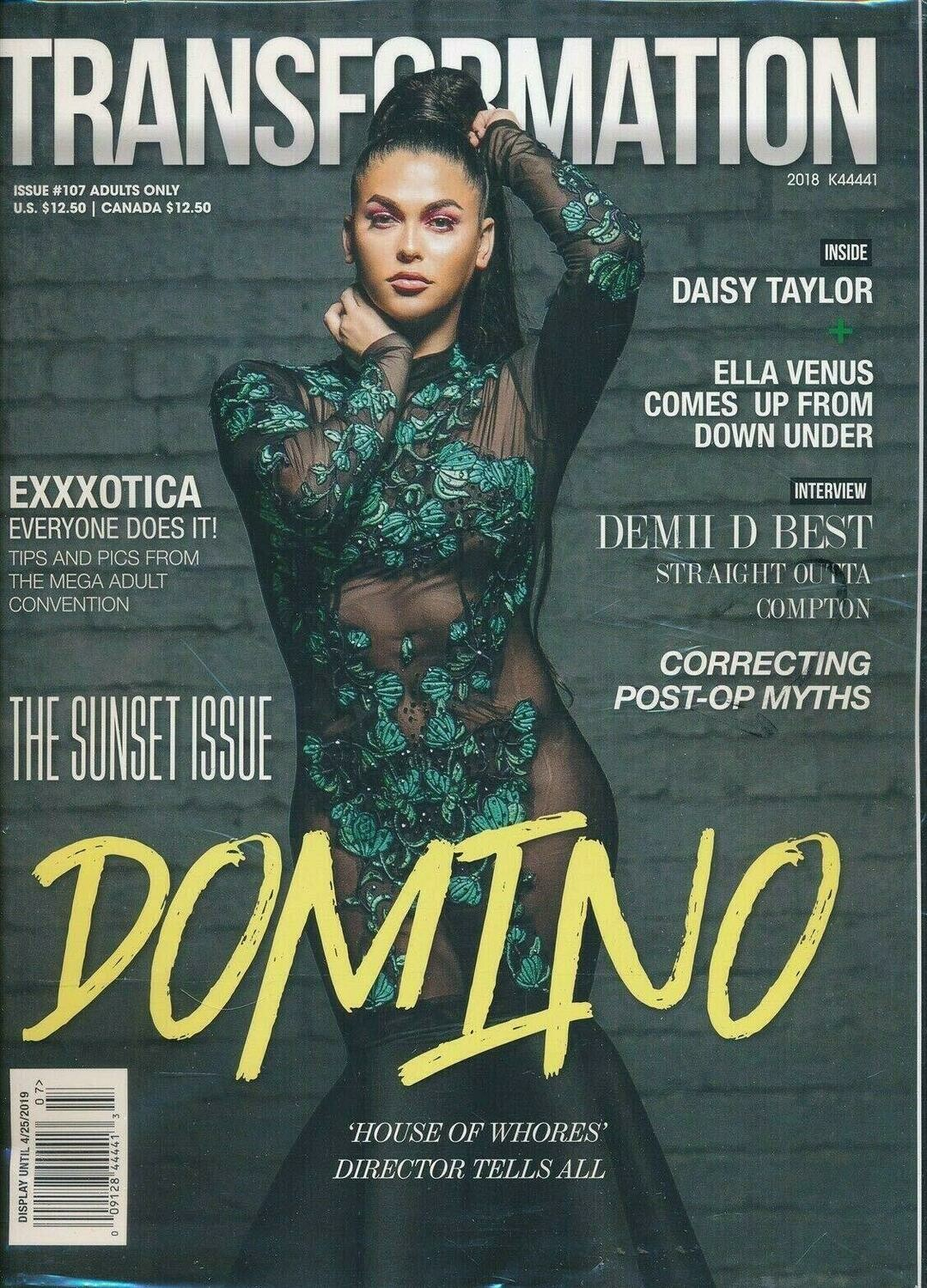 TRANSFORMATION Adult Magazine Issue Number 107 2018 TVTS DOMINO Cover The-Sunset Issue