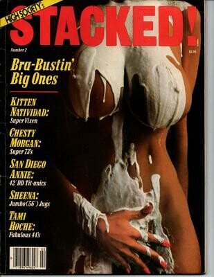 STACKED MAGAZINE #2 KITTEN NATIVIDAD Keli Stewart 1980