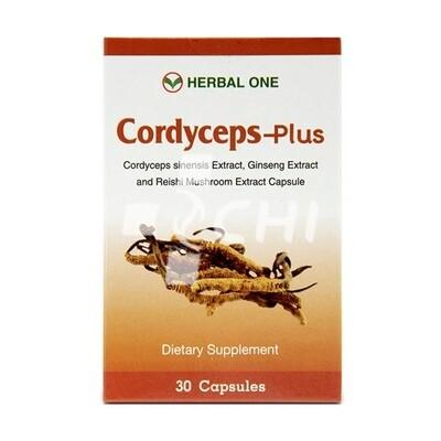 Тайские капсулы Кордицепс-плюс (Cordyceps-plus) с Женьшенем и Линчжи, производитель Herbal one