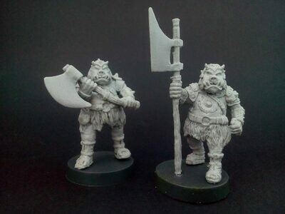 Gamorreans guard ( 2 figures)