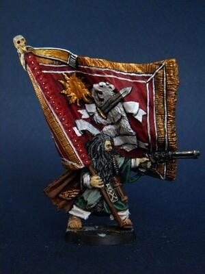 Ice warrior -Wild standard bearer (Proxy Valhalla )