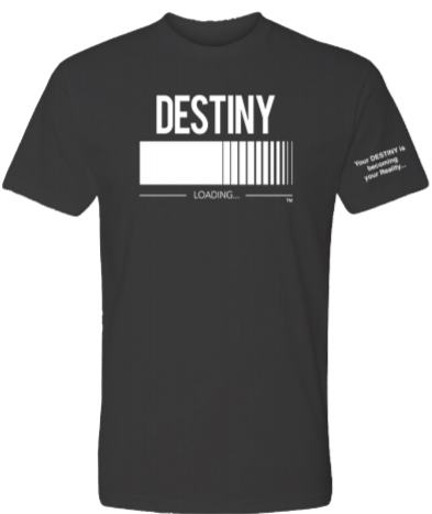 DESTINY Loading T-Shirt Unisex Black