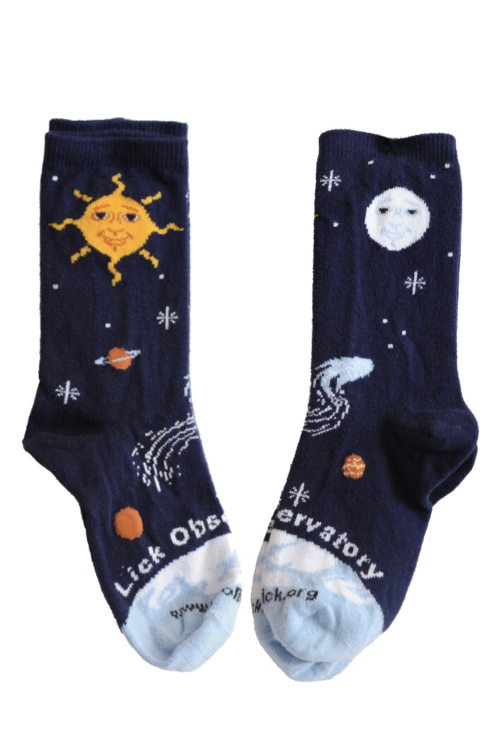 Lick Observatory Solar System Sock