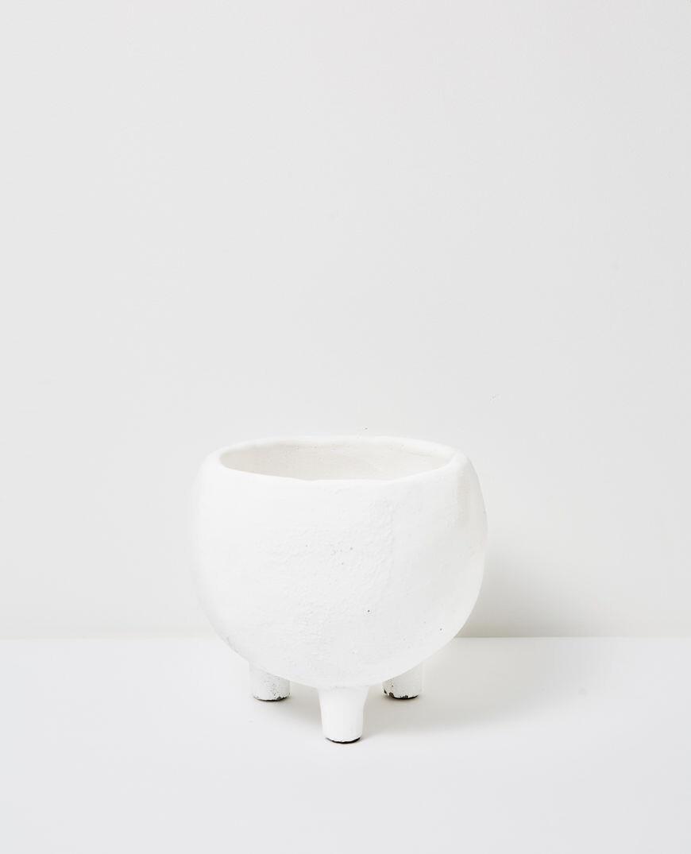 Papaya Monte Pot - Medium
