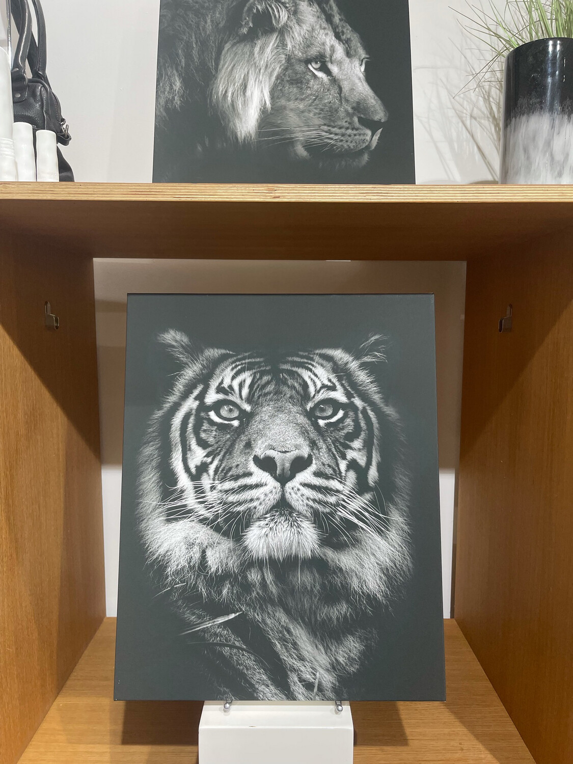 Tiger By Henry Ross