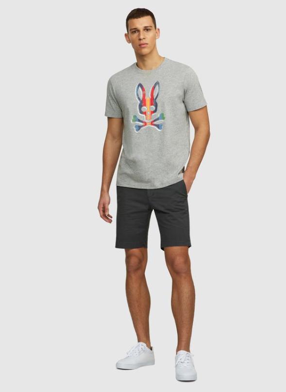 Psycho Bunny Mens Brooksbank Tee Shirt In Heather Grey