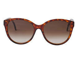 Gucci Sunglass Woman Injection In Havana Brown With Brown Lenses