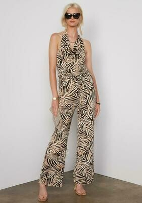 Tart Collections Dhara Jumpsuit In Zebra
