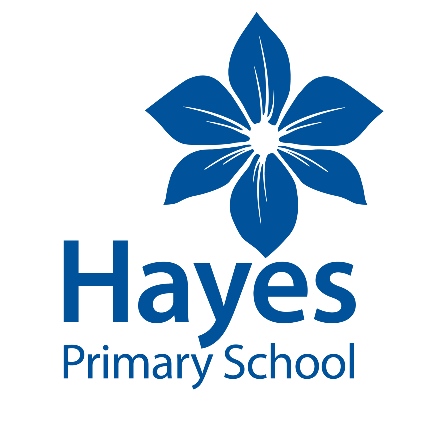 Hayes Primary, Bromley - Autumn Term 2 2020 - Wednesday