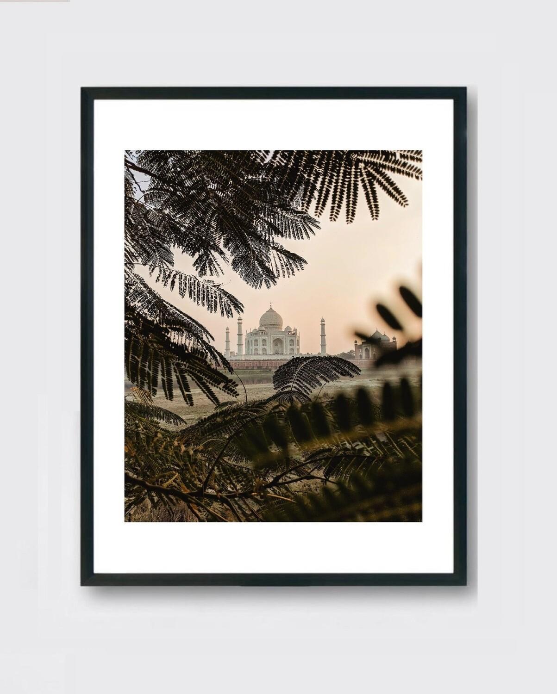 Taj Mahal - Nature