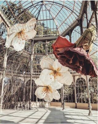 Madrid - Flower