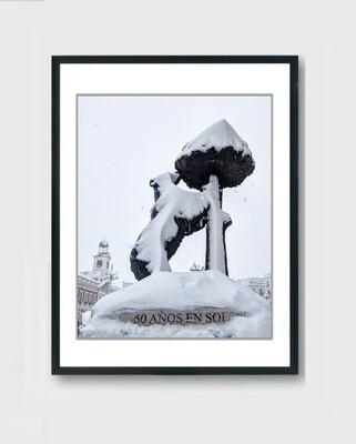 Oso y Madroño - Nieve Madrid