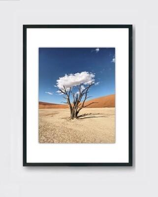 Namibia Tree Cloud