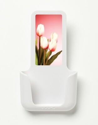 YOU·P | Tulpen