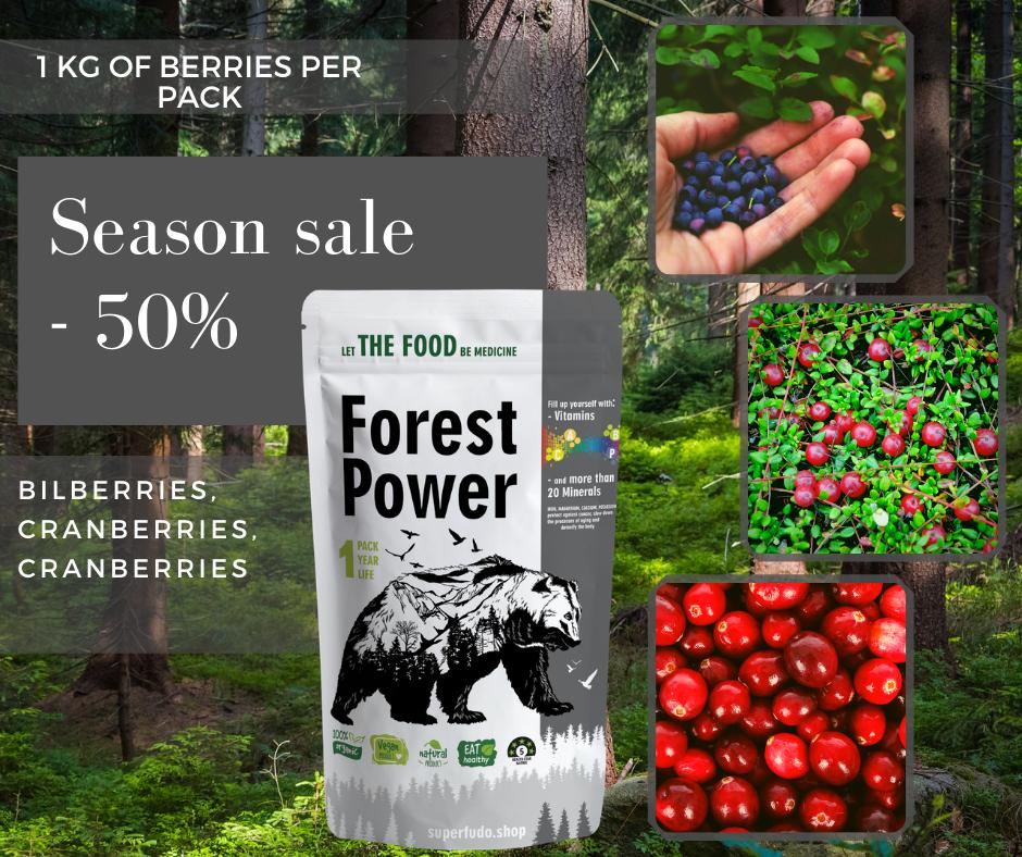"""Forest Power"" Wild Berries Powder Mix | PREMIUM Quality  ~90g / ~3.17oz"