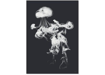 Affiche Poster jellie light noir et blanc A3
