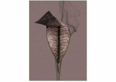 Affiche Hipster leaf A3