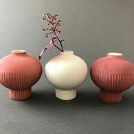 vase coloris biking red