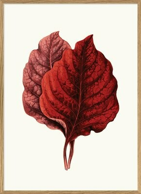 Affiche RED LEAVES   30x40 cm