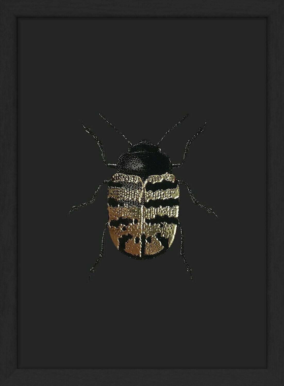 Affiche GOLDEN BEETLE  avec cadre noir 17x23 cm