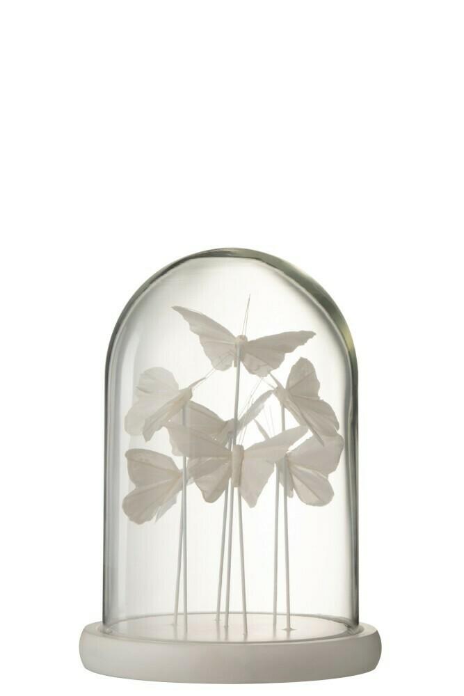Cloche / Globe 7 papillons blancs
