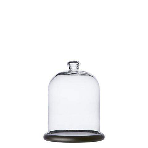 Cloche / Globe socle en bois noir
