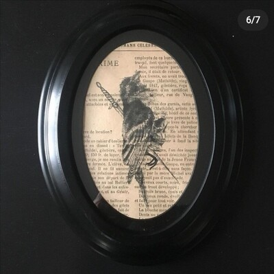Print and Frame BIRD SKULL by The Artist Alexis Kopteff