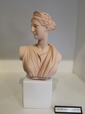 ARTEMIS  buste  col vintage pink