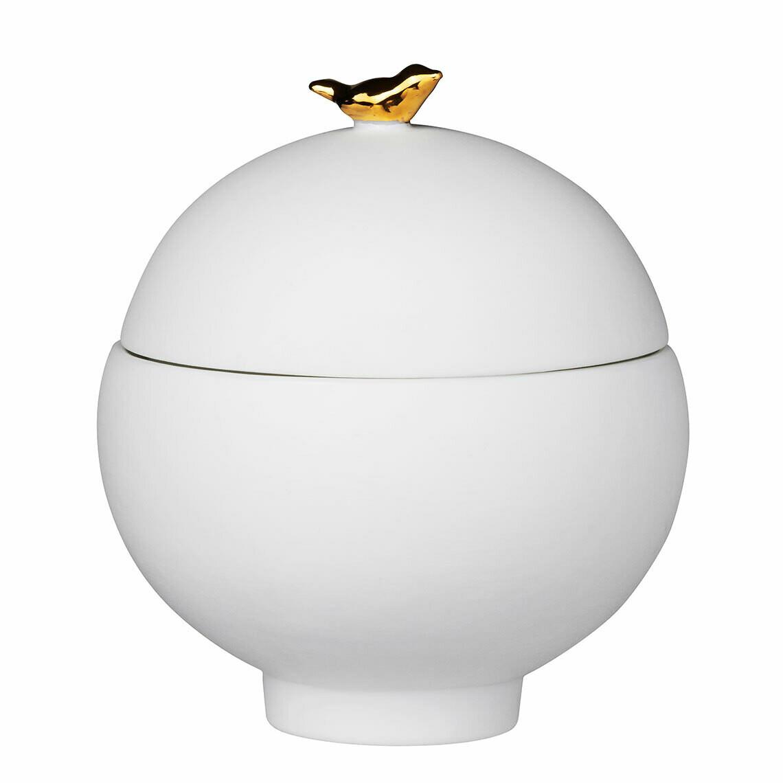 Pot BIRD