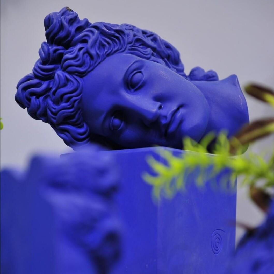 Apollo head horizontal bleu elect