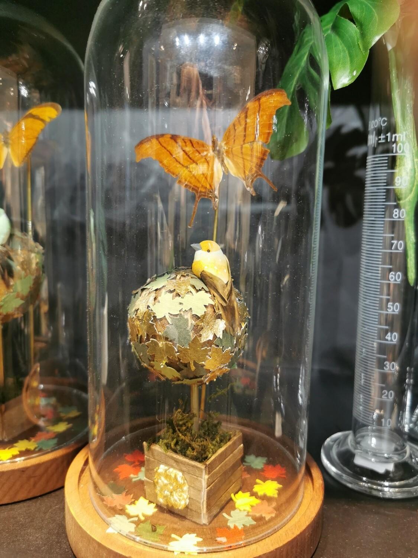 Cloche / Dome papillon PIECE UNIQUE ARTISTE FRANCAISE