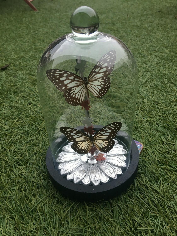 Cloche deux papillons sur fleur à la feuille d argent . PIECE UNIQUE ARTISTE FRANCAISE