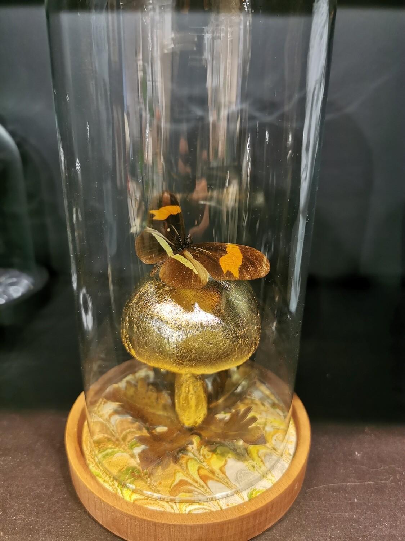 Cloche / dôme / Globe Papillon sur champignon à la feuille de cuivre PIECE UNIQUE ARTISTE FRANCAISE